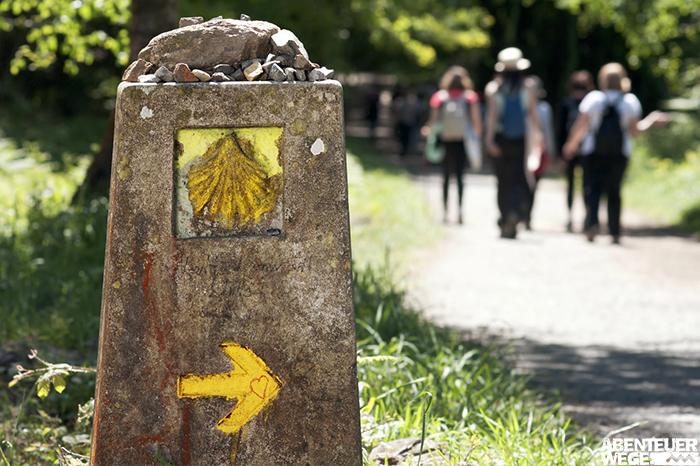 Welcher Jakobsweg ist der richtige für mich?
