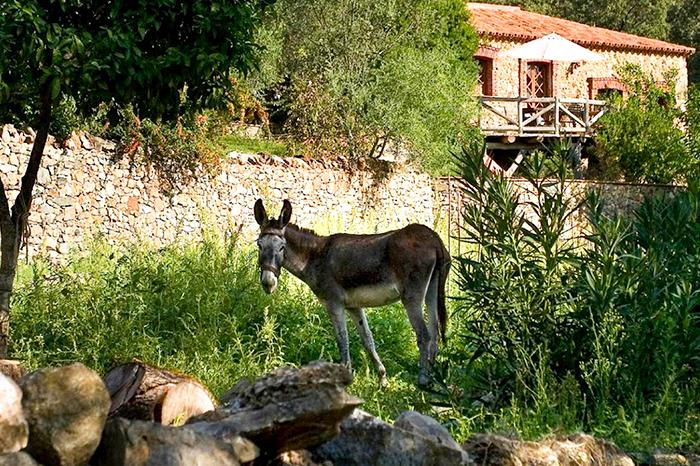 Idyllische Finca in der Sierra de Aracena