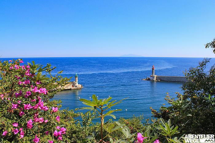 Bunte Blüten und das tiefblaue Mittelmeer vor der Küste Korsikas