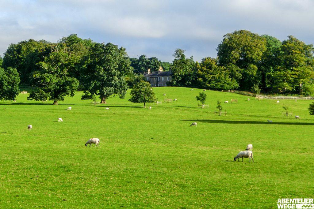 Englands vielfältige Wanderwelten - verträumt bis wildromantisch