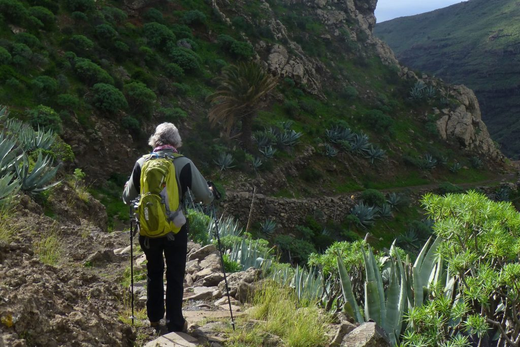 Wandern auf La Gomera: Der grünen Insel der Kanaren