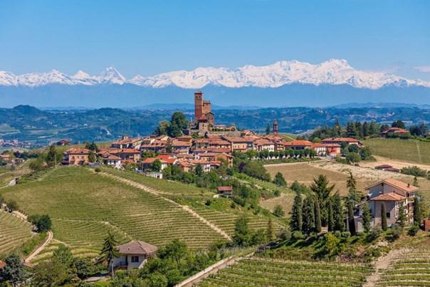 Blick auf die Weinberge Piemonts mit Alpenpanorama