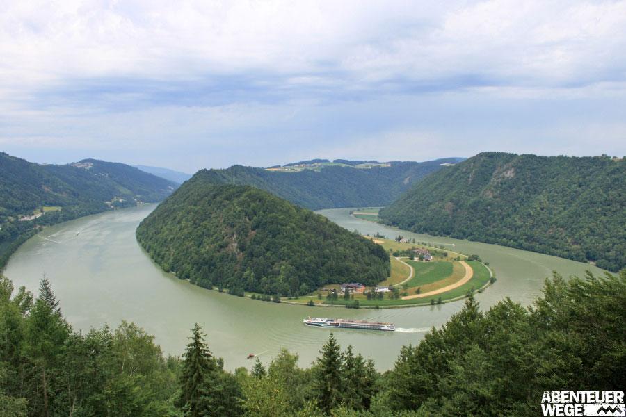 Schlögener Blick am Donausteig.